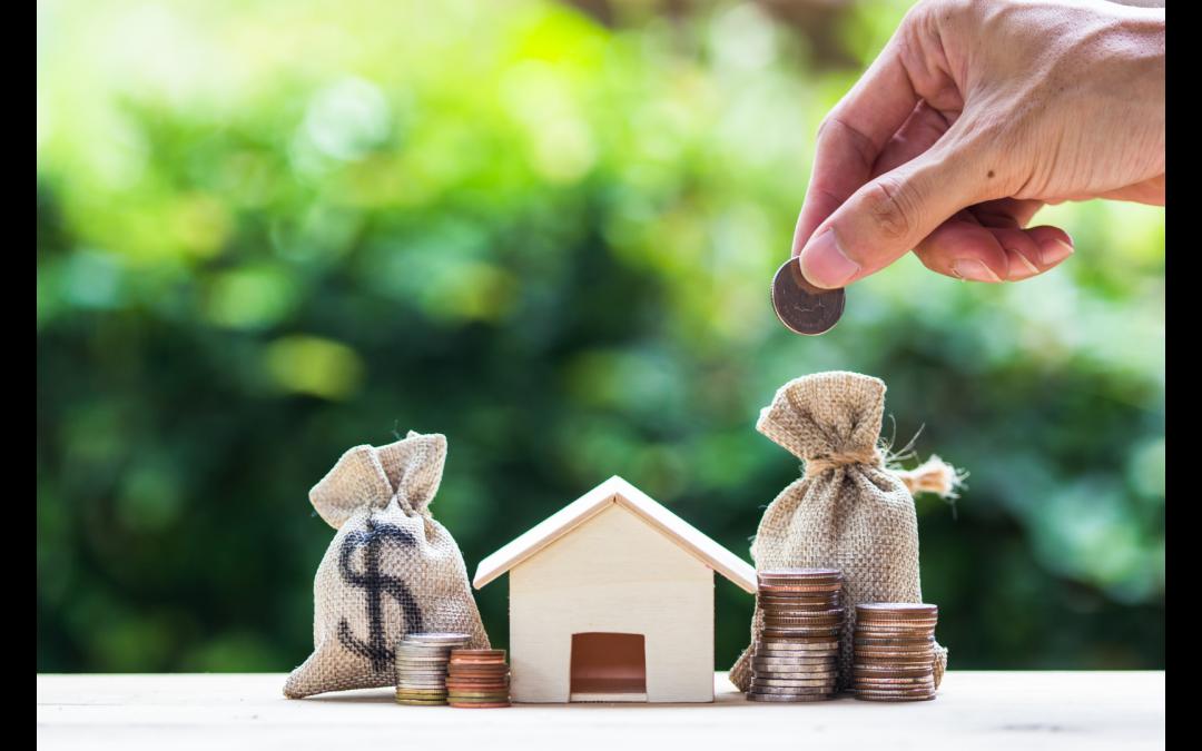 Best financial websites NZ